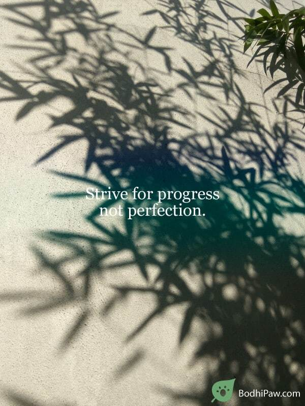 Strive for progress not perfection - productivity quote inspirational motivational life